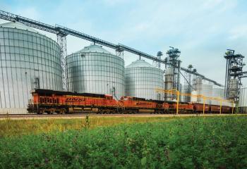 BNSF train at grain terminal